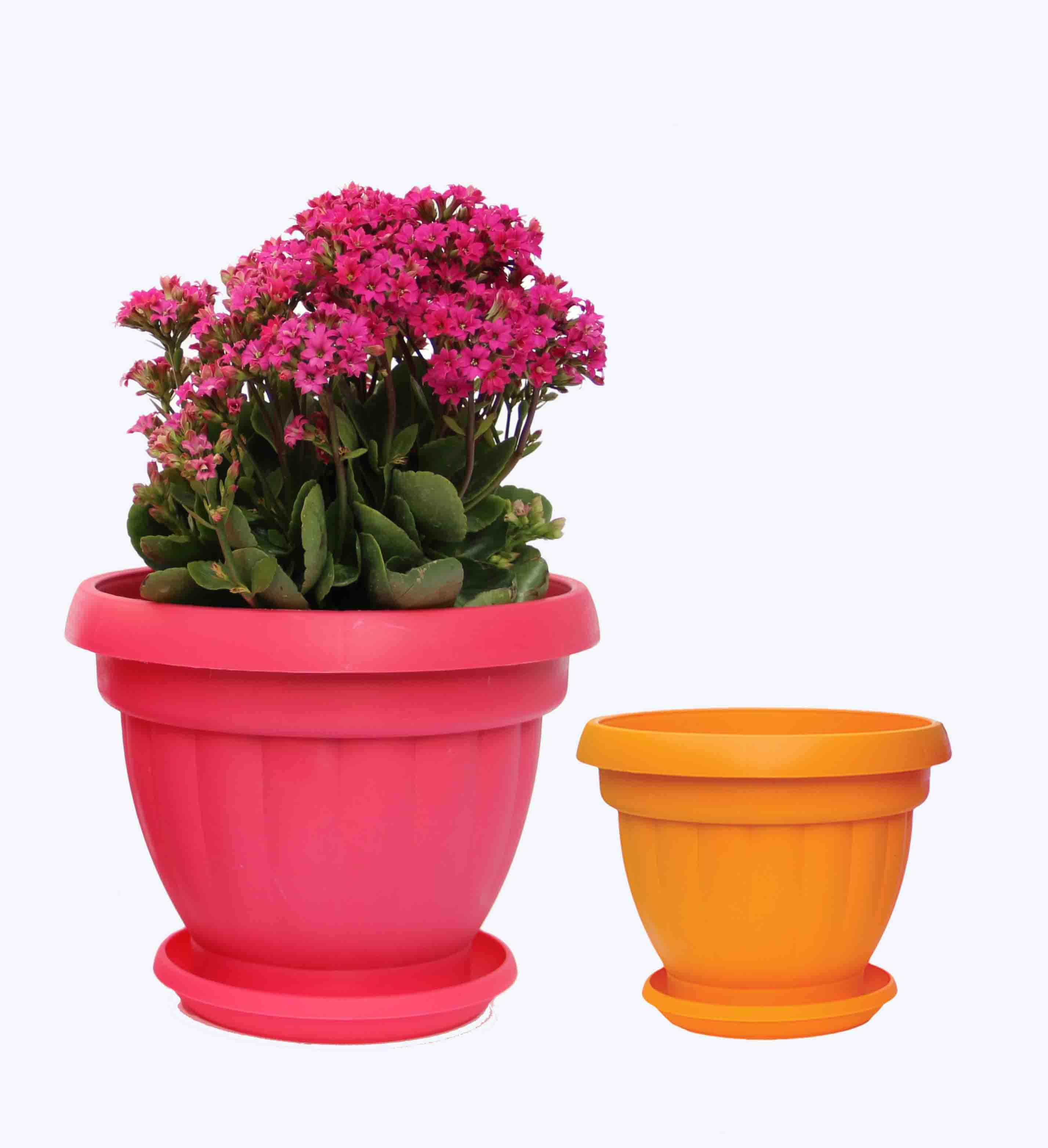 گلدان پلاستیکی مستطیلی ارزان